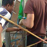 pembuatan sumur bor yang dilakukan tim kami